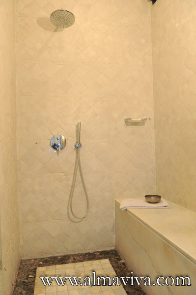 Shower with plain white zellige 5x5 cm (about 2x2'')