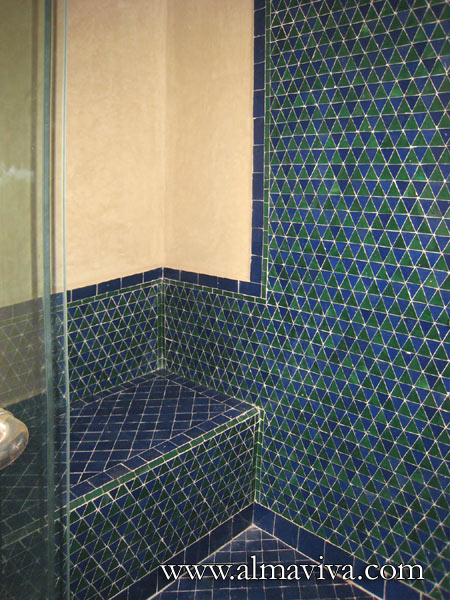 Shower with seat, blue and green