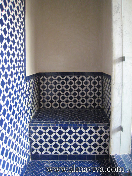 Shower with seat, white and blue